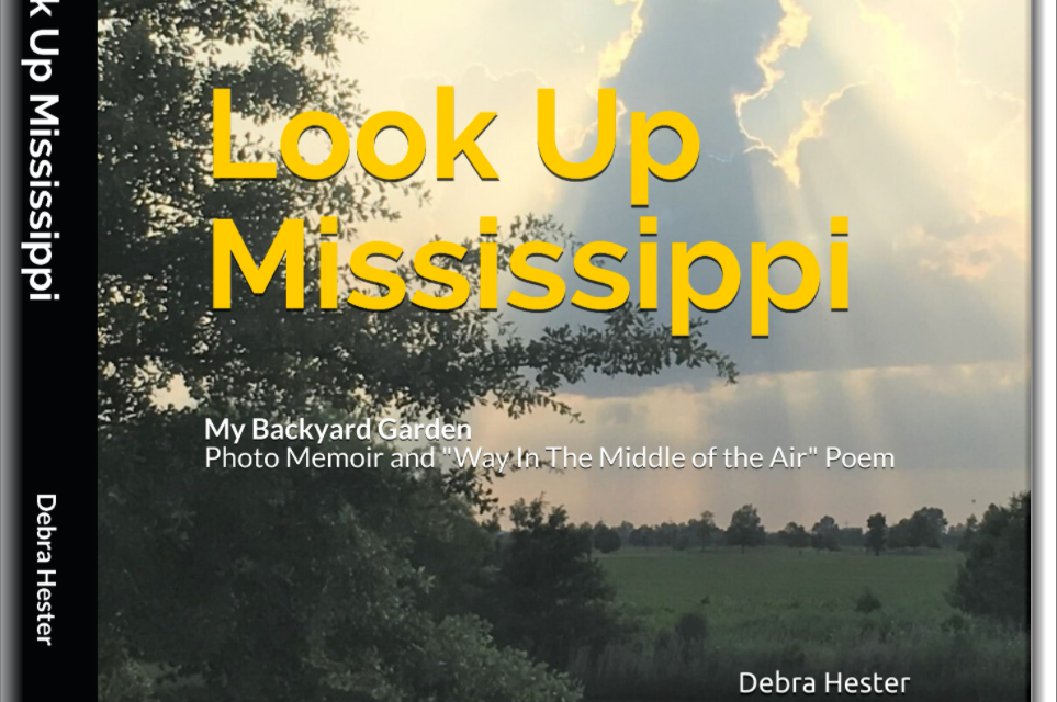 Look Up Mississippi, A Photo Memoir