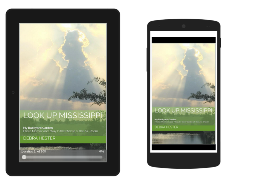 Digital Cover for Look Up Mississippi inspired by new Mississippi State Flag